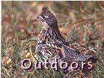 Outdoors Page in Phillips WI - Phillips Wisconsin Resort - Grouse hunting and grouse hunters near Phillips Wisconsin